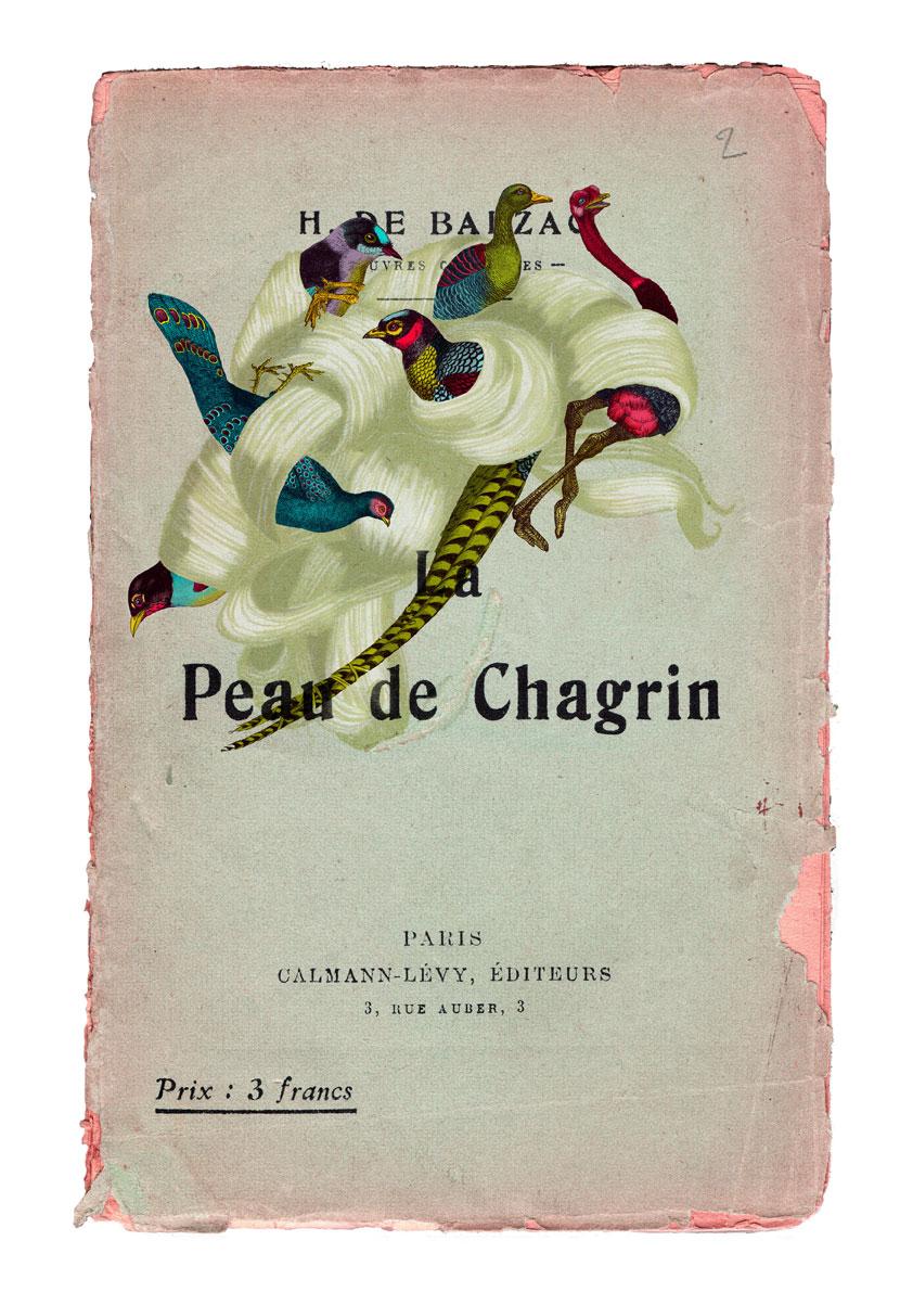 La Peau de Chagrin | Delphine Lebourgeois | La Peau de Chagrin