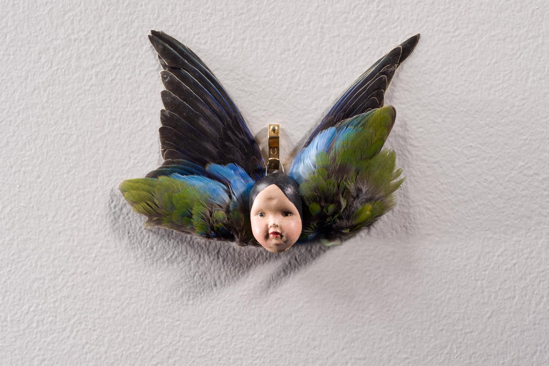 Angelot à plume | Maïssa Toulet | Angelots à plumes