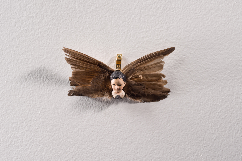 Angelot à plumes | Maïssa Toulet | Angelot à plumes