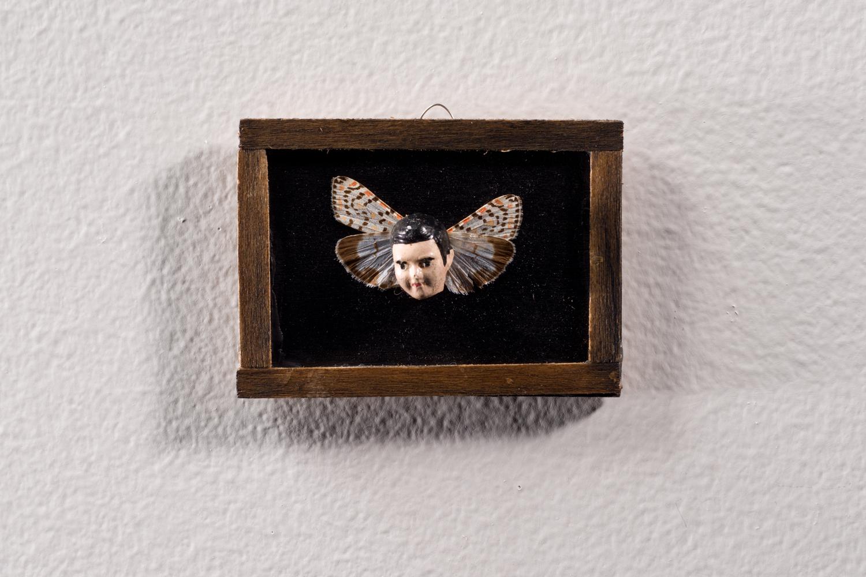 Angelot à ailes de papillons n° 1 | Maïssa Toulet | Angelots à ailes de papillons
