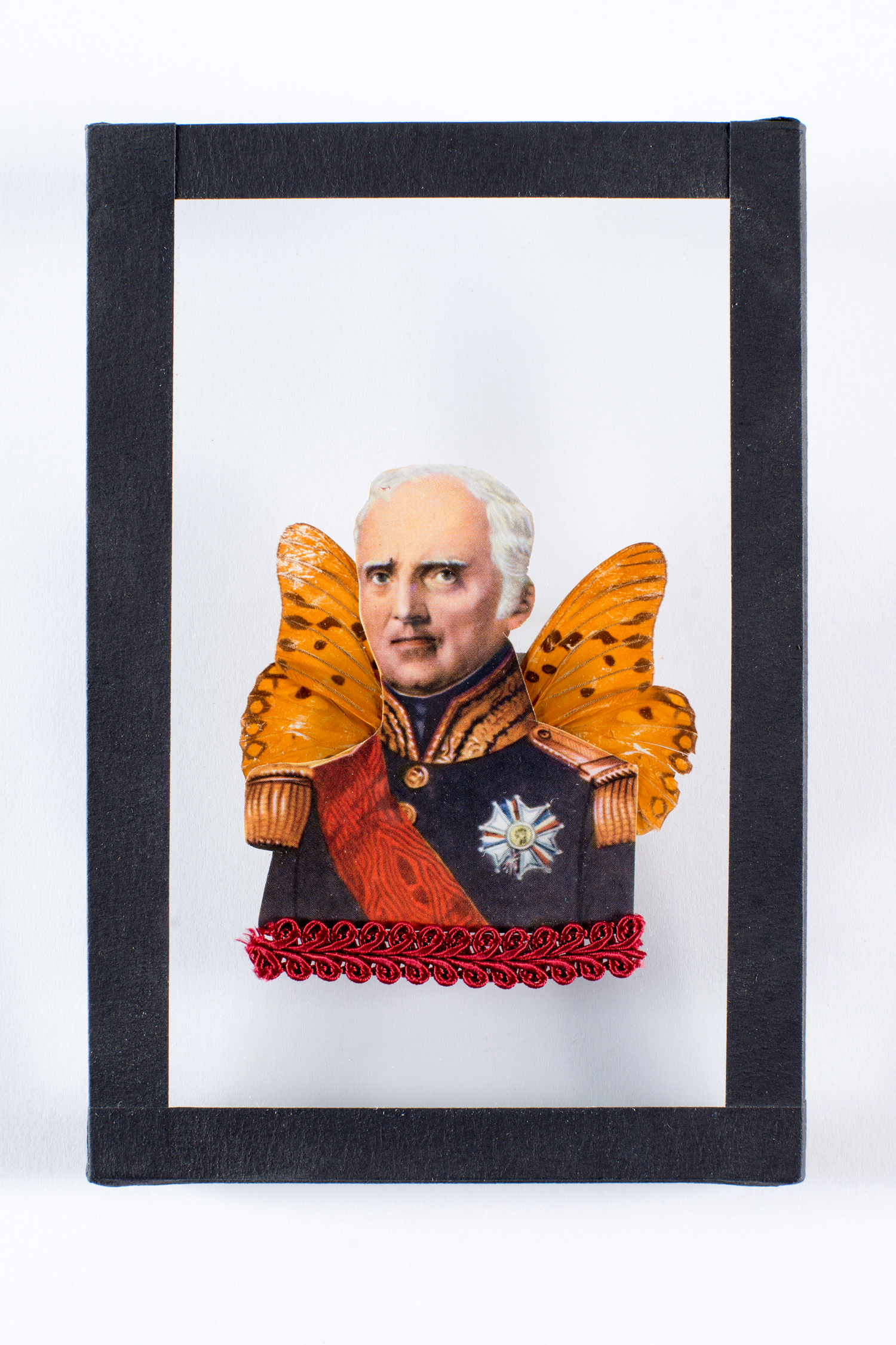 Homme Illustre-Papillon n°4 | Maïssa Toulet | Hommes Illustres-Papillons (n° 4 à 6)