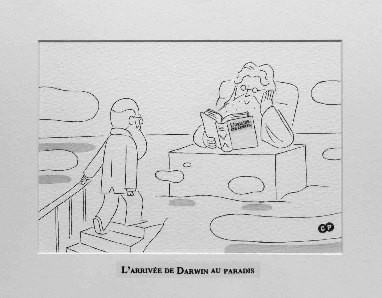 Charlie Poppins | Darwin |