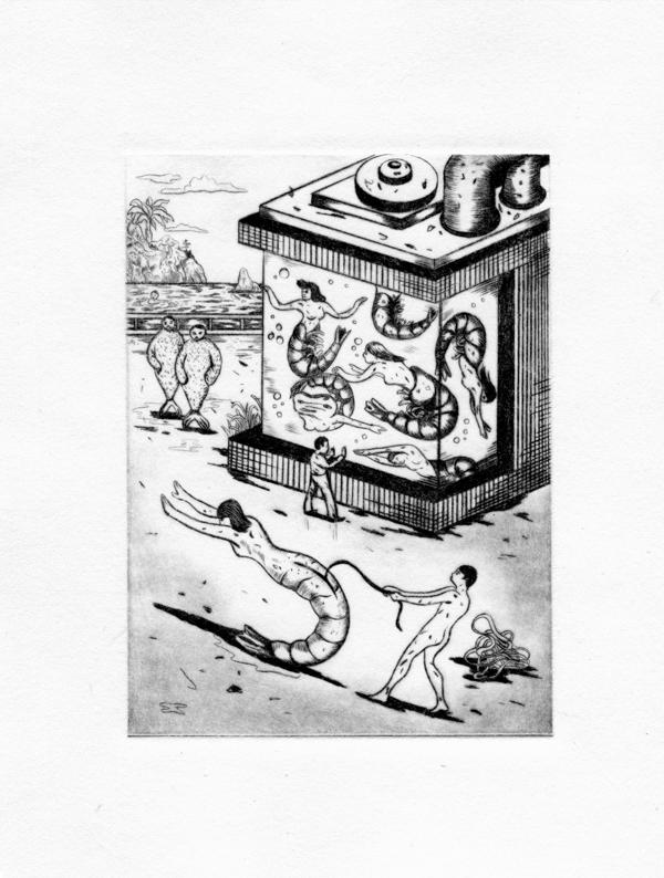 Icinori | Femme-Crevette | Icinori