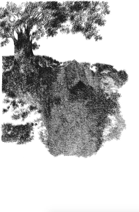 Cabane de pêcheur sous un grand arbre | Cabane de pêcheur sous un grand arbre | Nylso