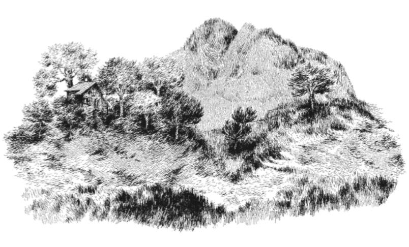 Nylso | Chalet et montagne à vache | Nylso