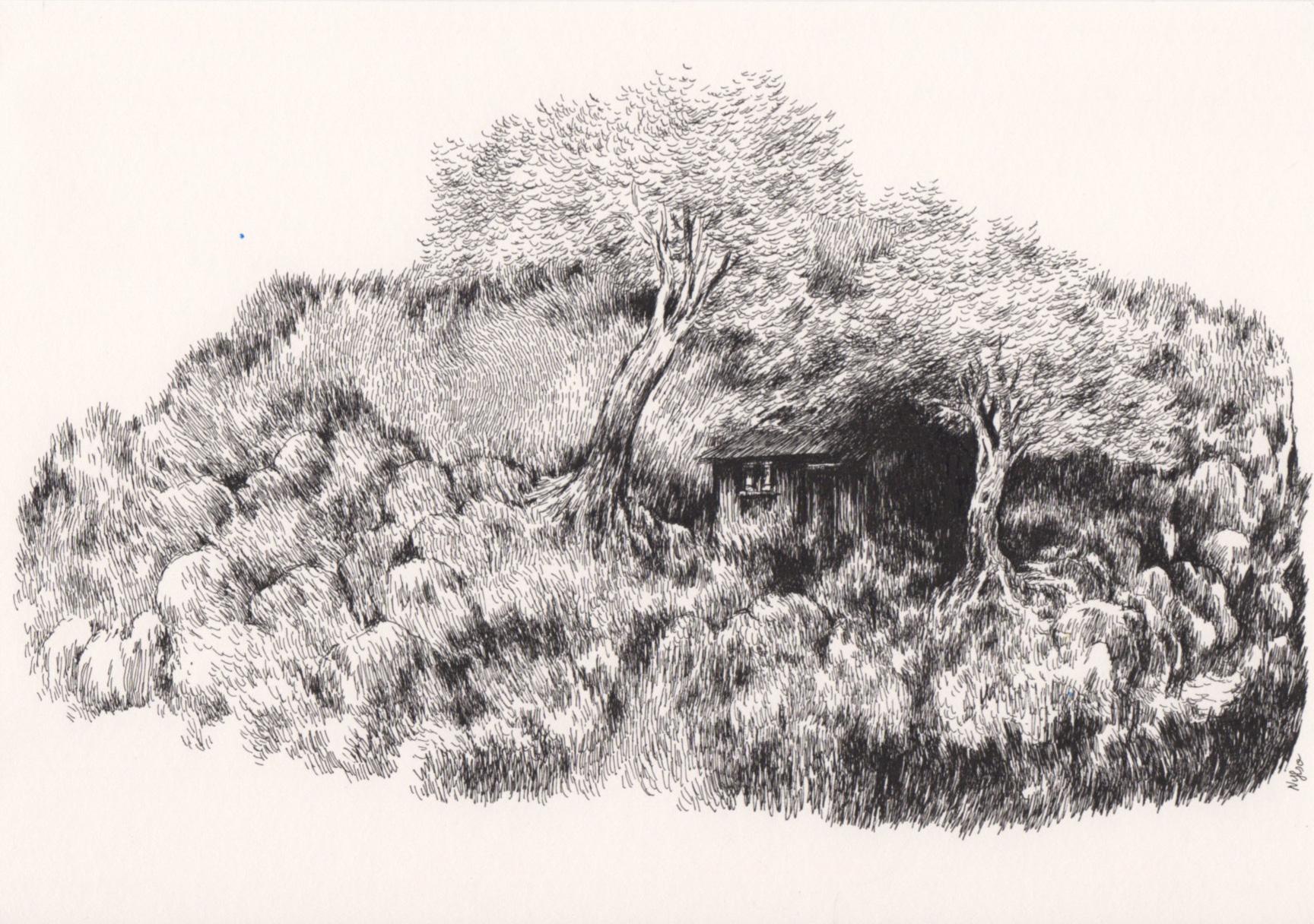 Nylso | Entre deux arbres | Nylso