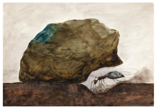 Un trou pour un royaume | Un trou pour un royaume / La vie d'une Reine | Colette Portal