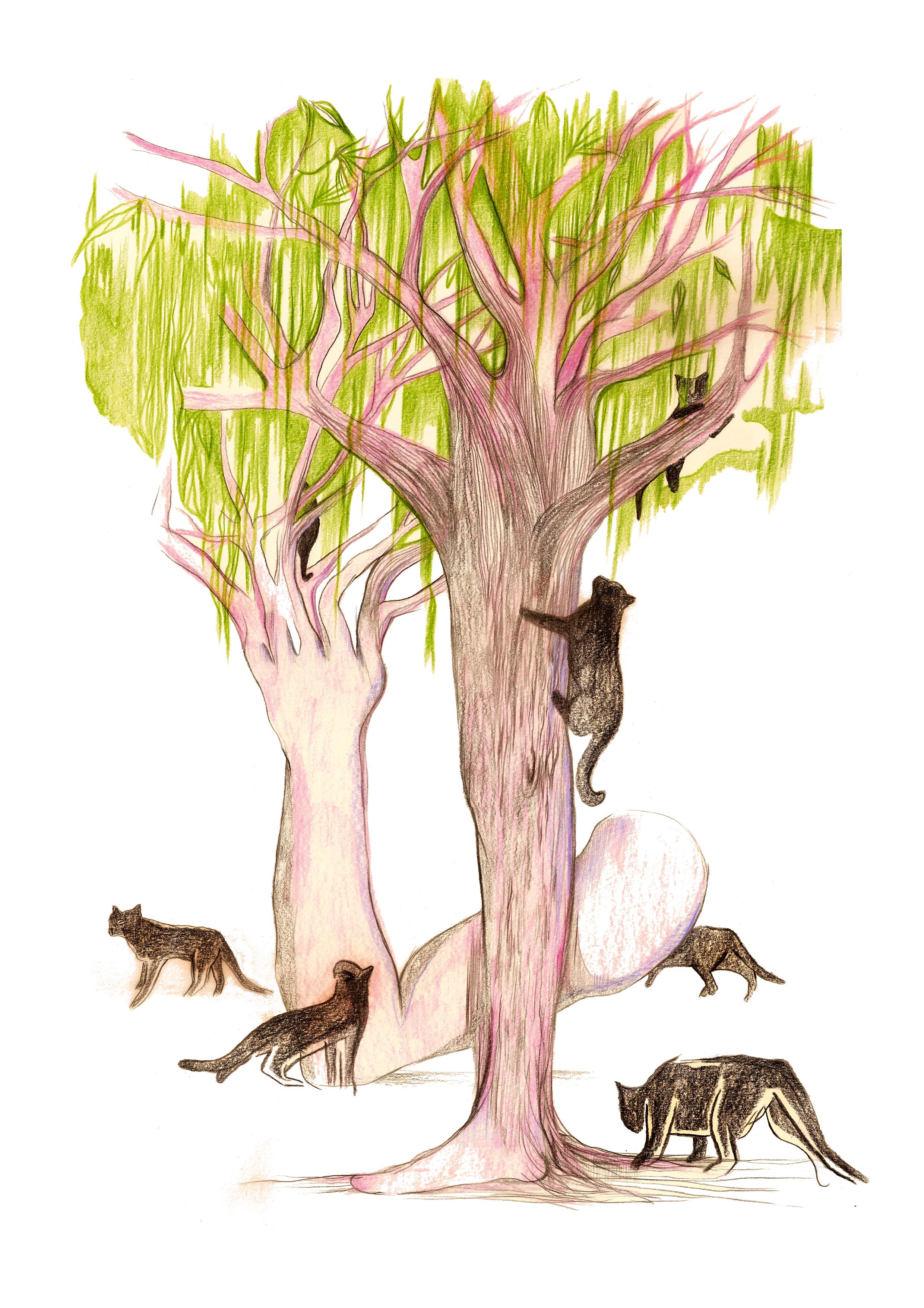 L'arbre à chat | GALERIE TREIZE DIX / L'ARBRE À CHATS | NOÉMIE CHUST