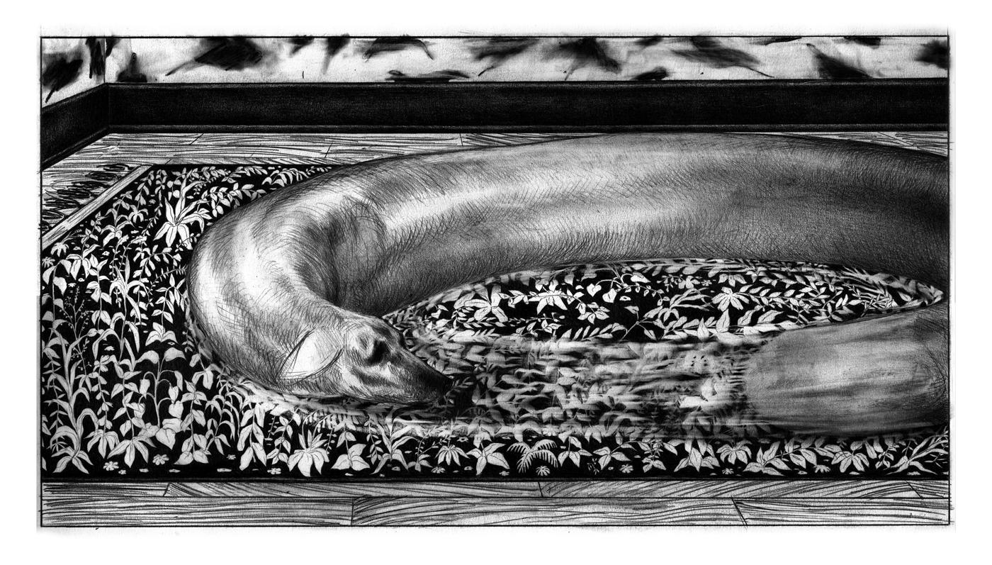 03 | La Mort du chien | Nicolas Zouliamis