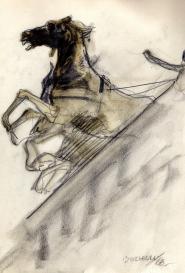 Cheval cabré Guido Buzzelli