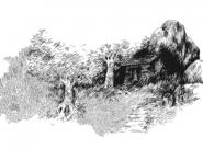 Dans une ancienne mine creusée dans la roche Nylso