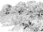 Dernière cabane en haut Nylso