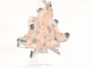 GALERIE TREIZE-DIX / PLAN A PLUSIEURS Chloé Cruchaudet