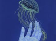 GALERIE TREIZE-DIX I AUTRE JE Lisa Zordan / La main et la méduse